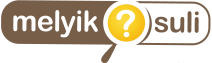 melyiksuli_logo_transparent
